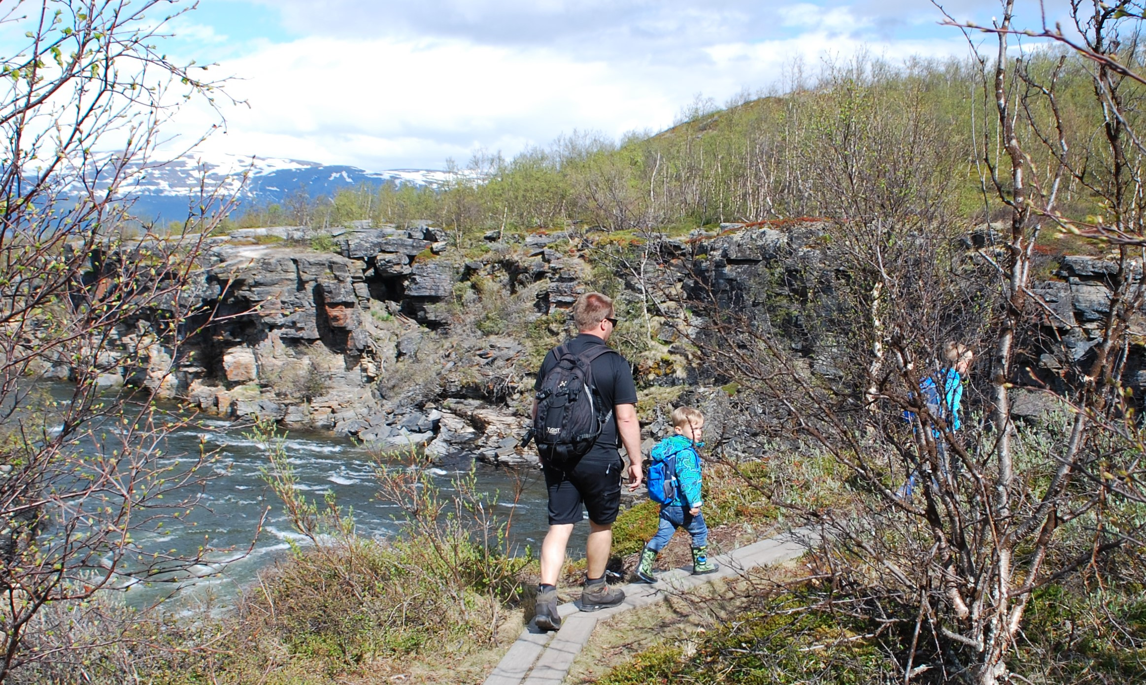 Figure 4 Abisko National park (Source: Linda Stihl)