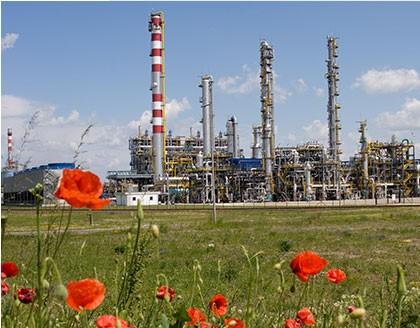 Picture 1:  The Mol co. plant in Tiszaújváros